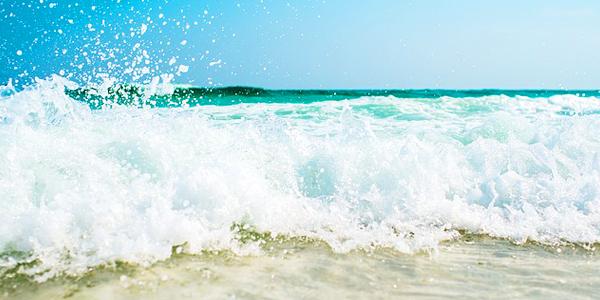 ビーチ波打ち際